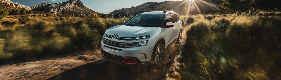 Citroën entreprise